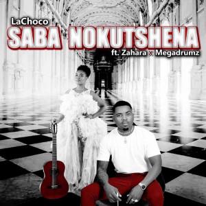 Album Saba Nokutshena from Zahara