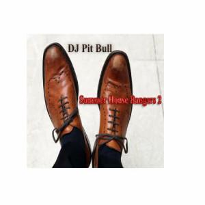 Album Summer House Bangers 2 from DJ Pit Bull