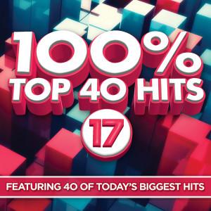 100% Top 40 Hits 17 dari Various Artists