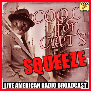 Album Cool For Cats from Squeeze