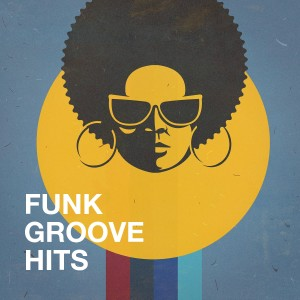 Album Funk Groove Hits from The Funky Groove Connection
