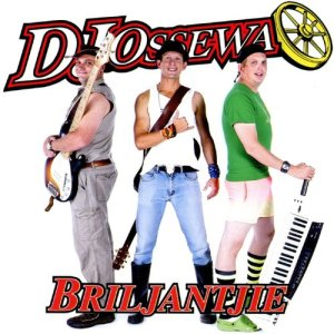 Listen to Briljantjie song with lyrics from DJ Ossewa