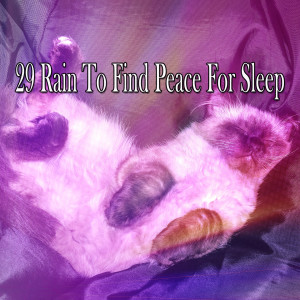 Album 29 Rain to Find Peace for Sleep from Rain Sounds & White Noise