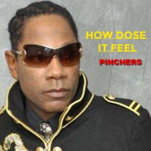 Album How Dose It Feel from Pinchers