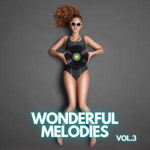 Album Wonderful Melodies vol.3 from Eric Hammerstein