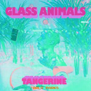 Album Tangerine from Glass Animals