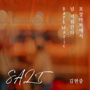 金賢重的專輯SALT