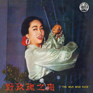 Album Ye Mei Gui Zhi Lian from 葛兰