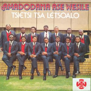 Album Tsietsi Tsa Letsoalo from Amadodana Ase Wesile