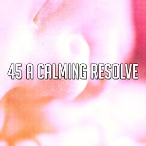 Sleep Baby Sleep的專輯45 A Calming Resolve