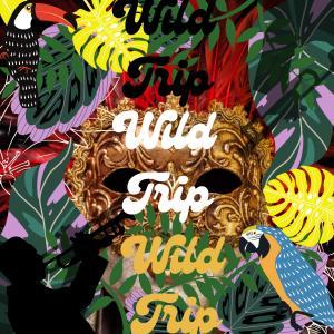 Album Wild Trip (Studio) from Chemutai Sage