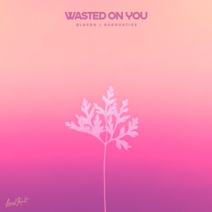 Album Wasted on You from Aukoustics