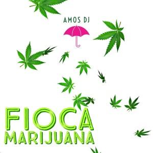 Amos DJ的專輯Fioca Marijuana