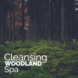 Album Cleansing Woodland Spa from SPA Music