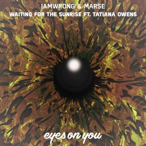 Album Waiting for the Sunrise (feat. Tatiana Owens) from iamwrong