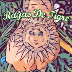 Album Rayas De Tigre from Braynzuh