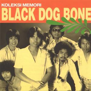 Dulu Dan Sekarang 2004 Black Dog Bone