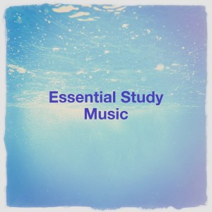 Best Relaxation Music的專輯Essential Study Music
