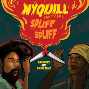 Nyquill (Spliff A Light Spliff) (Remix) dari Richie Spice