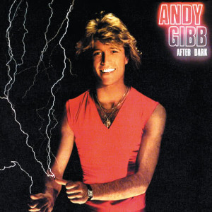 Album After Dark from Andy Gibb