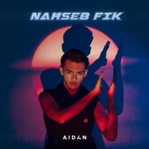 Album Naħseb Fik from Aidan