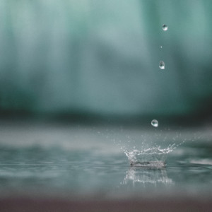 Sounds of Nature White Noise for Mindfulness Meditation and Relaxation的專輯Tranquil Tracks   Spring Rain