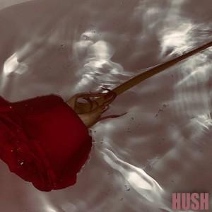 Hush的專輯미친거같아