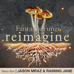 Album Disco Sun from Jason Mraz