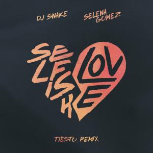 Tiësto的專輯Selfish Love (Tiësto Remix)