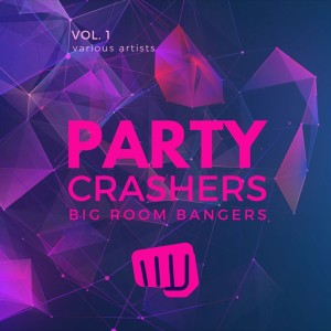Album Party Crashers (Big Room Bangers), Vol. 1 from Various Artists