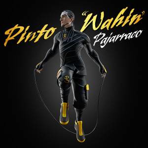 "Album Pajarraco from Pinto ""Wahin"""