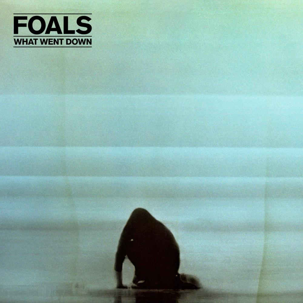 What Went Down 2015 Foals