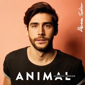 Animal 2017 Alvaro Soler