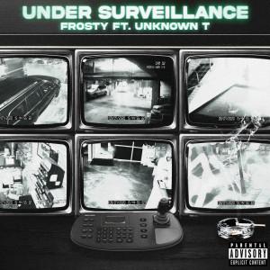 Album Under Surveillance from Frosty