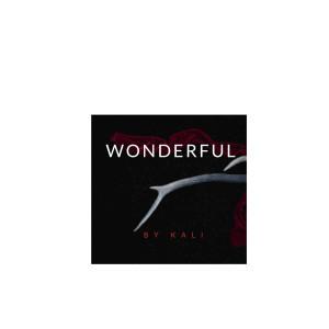 Album Wonderful from Kali