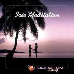 Album Irie Meditation from Various Artists
