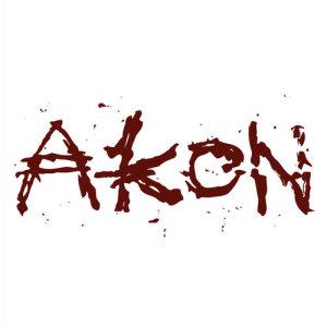 Akon的專輯Gunshot (Fiesta Riddim)