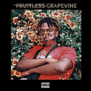 Album Fruitless Grapevine from Ud