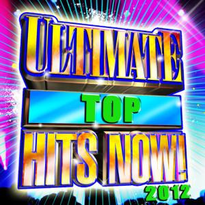 Future Hit Makers的專輯Pop Hits 2012 - 2013