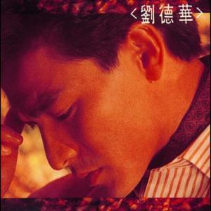 劉德華 2006 劉德華