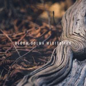 Album Bloom Dolma Meditation from SPA Music