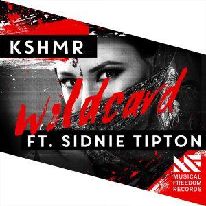 Album Wildcard (feat. Sidnie Tipton) from Sidnie Tipton