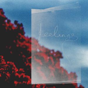 Album Feelings from Bearson