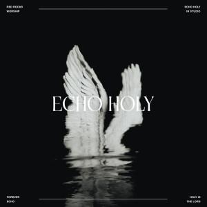 New Album Echo Holy (In Studio)