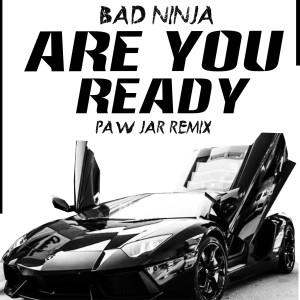 Album Are You Ready (PAW JAR Remix) from BAD NINJA