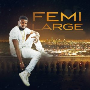 Listen to I Will Love Forever song with lyrics from Femi Large