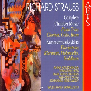 Anna Kandinskaia的專輯Strauss: Complete Chamber Music - 9 Piano Trios, Clarinet, Cello, Horn