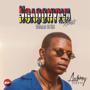 Listen to Ngaqonywa (Remix) song with lyrics from Aubrey Qwana