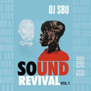 Sound Revival 2011 DJ SBU