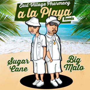 Album A La Playa (Remix) from East Village Pharmacy